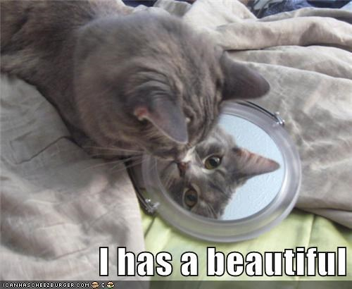 beautiful,i has,mirror,reflection