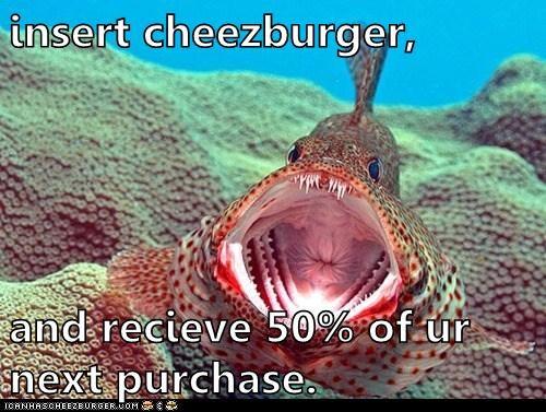 Cheezburger Image 5813311744