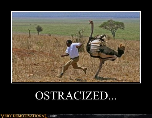 hilarious ostrich running scary wtf - 5813442304