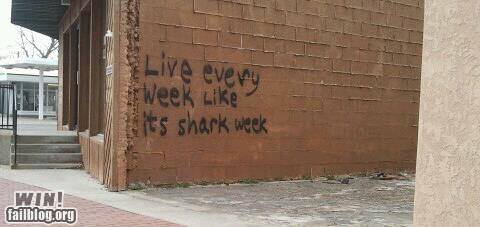 graffiti,hacked irl,shark week,tag,true facts,wisdom
