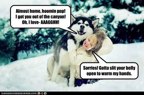 Almost home, hoomin pup! I got you out of the canyon! Oh, I love- AAAGGHH! Sorries! Gotta slit your belly open to warm my hands.