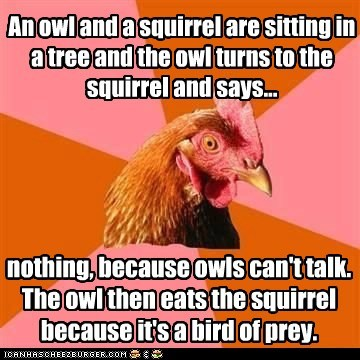 An owl and a squirrel are sitting in a tree and the owl turns to the squirrel and says... nothing, because owls can't talk. The owl then eats the squirrel because it's a bird of prey.
