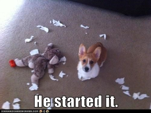 best of the week,corgi,destruction,Hall of Fame,mess,oops,plush toy,stuffed animal,toy
