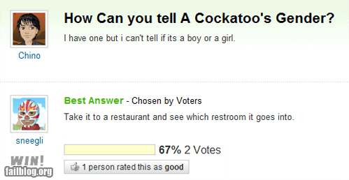 art of trolling,duh,gender,pets,troll,yahoo answers