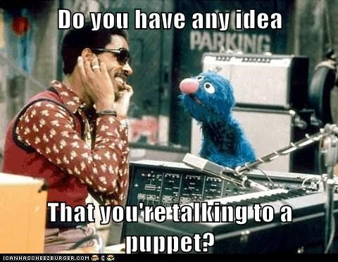 celeb funny Music Sesame Street stevie wonder - 5816064768