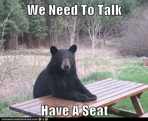 bear,table,we need to talk