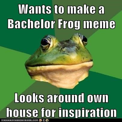 Wants to make a Bachelor Frog meme Looks around own house for inspiration