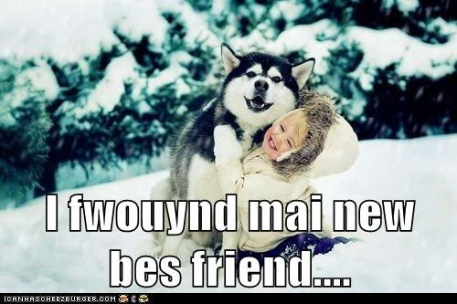 best friends,child,friends,friendship,happy dog,human,husky,kid,love,outdoors,play,playing,smile,smiles,smiling,snow,winter