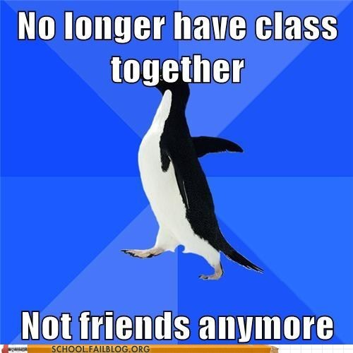 classmate,meme,socially awkward penguin,who are you