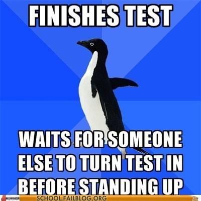 meme socially awkward penguin test Wait For It