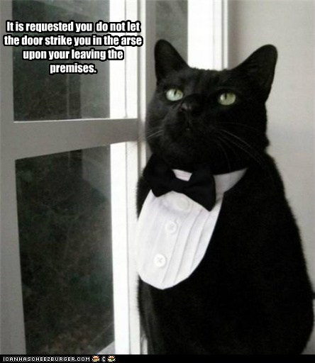 butler butlers cat Cats elite fancy lolcat rich rude upper crust