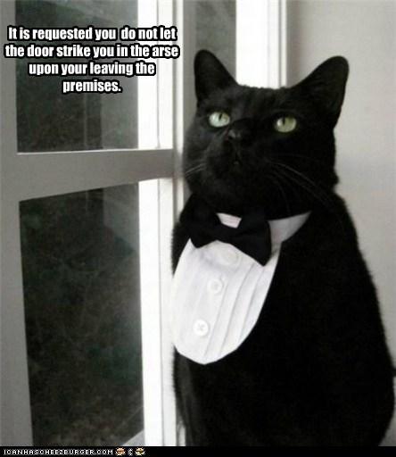 butler butlers cat Cats elite fancy lolcat rich rude upper crust - 5819791104