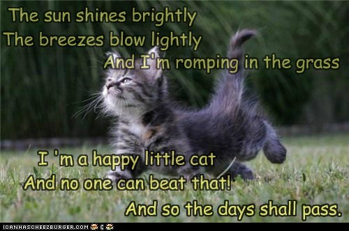 The sun shines brightly The breezes blow lightly I 'm a happy little cat And no one can beat that! And I'm romping in the grass And so the days shall pass.