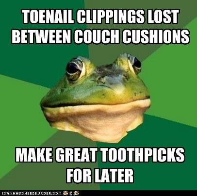 couch,couch cushions,disgusting,foul bachelor frog,frogs,gross,nail clippings,toenails,toothpicks