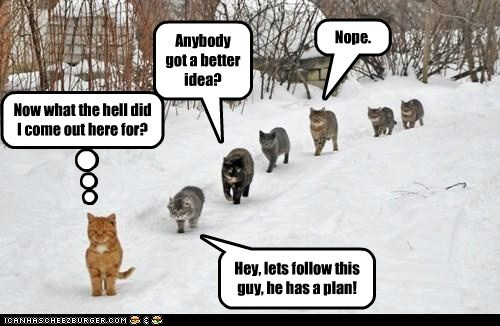 Hey, lets follow this guy, he has a plan! Now what the hell did I come out here for? Anybody got a better idea? Nope. Cleverness Here