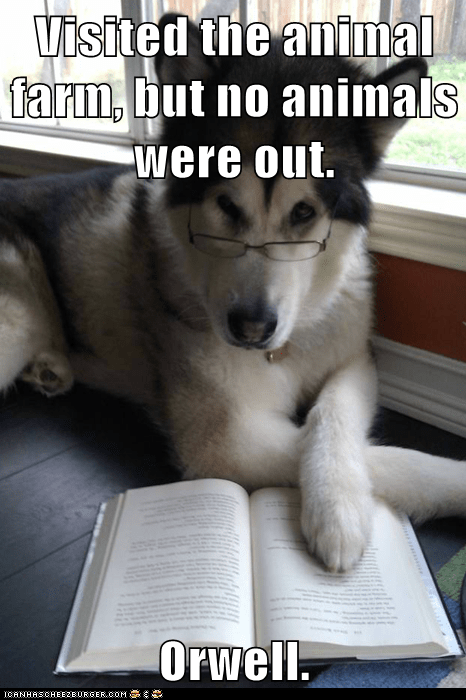 animal farm books Condescending Literary Pun Dog dogs george orwell literature oh well puns reading - 5822904064