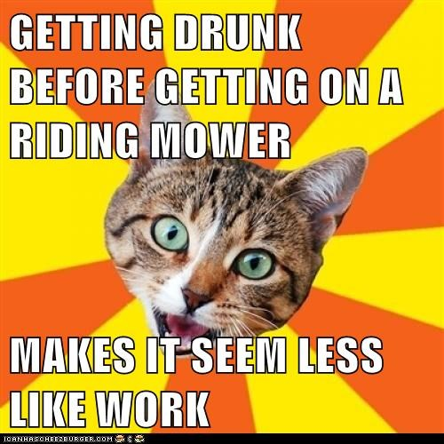 advice,bad advice,Bad Advice Cat,Cats,drinking,drunk,lawnmower,riding mower