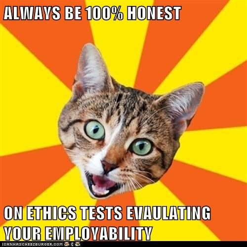 advice,applications,bad advice,Bad Advice Cat,cat,ethics,jobs,tests