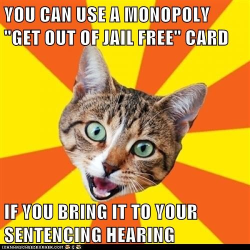 advice bad advice Bad Advice Cat Cats crimes hearings jail monopoly sentencing