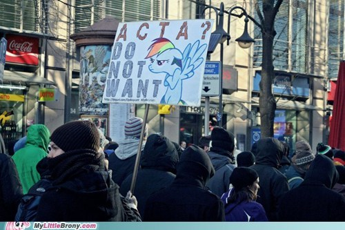 Acta do not want internet IRL rainbow dash - 5824167680