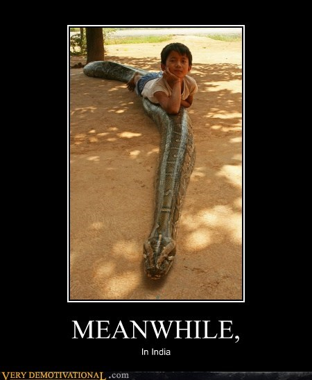 hilarious india kid Meanwhile snake - 5824389120