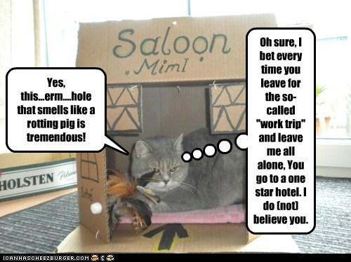 Cheezburger Image 5824579072