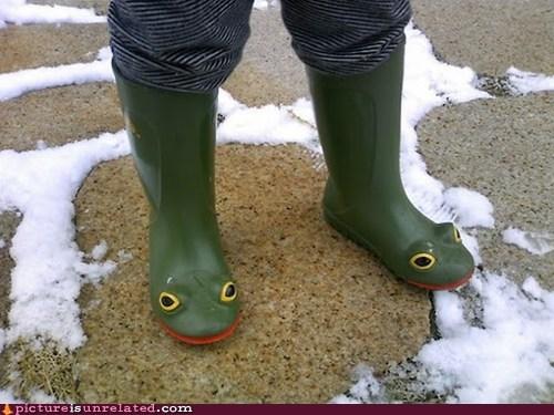 boots buy hypnotoad wtf - 5824804608