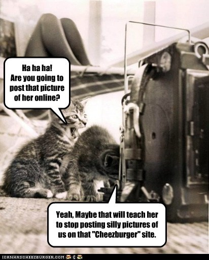 "Ha ha ha! Are you going to post that picture of her online? Yeah, Maybe that will teach her to stop posting silly pictures of us on that ""Cheezburger"" site."