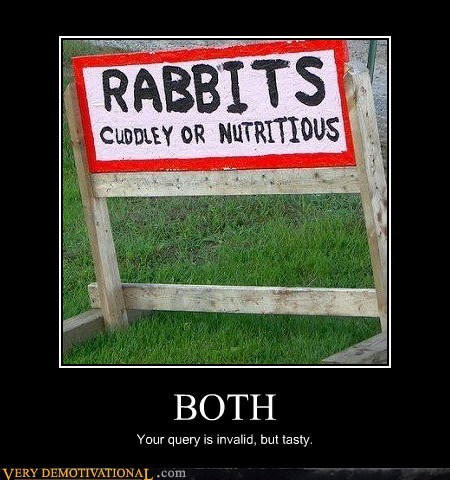 both hilarious invalid query rabbits - 5826436096