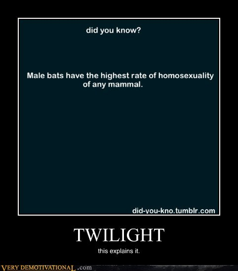 bats,hilarious,twilight,wtf