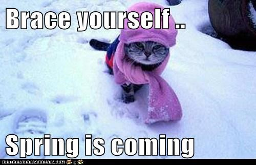 Brace Yourself Spring Is Coming Cheezburger Funny Memes