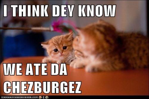 Cheezburger Image 5827369728