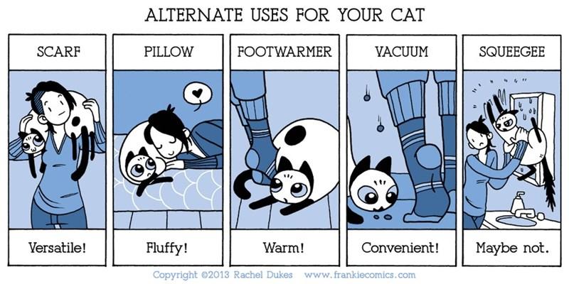 funny comics cat comics animal comics hugs Cats web comics - 5827845