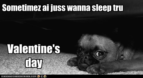 Sometimez ai juss wanna sleep tru Valentine's day