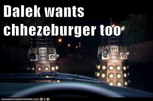 Cheezburger Image 5828884480