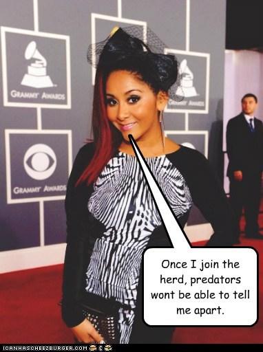 funny,Grammys,snooki