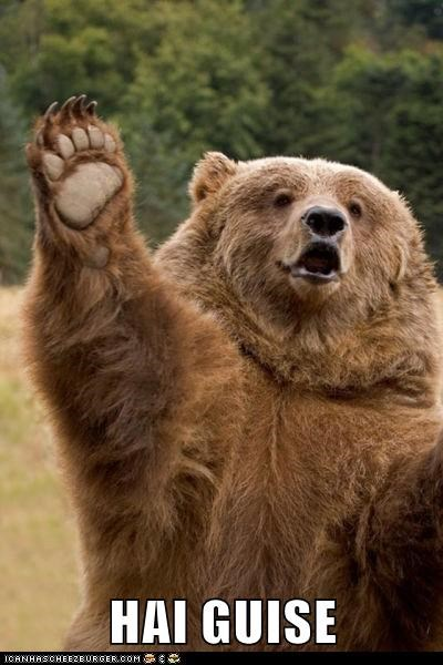 bear hai guise hi wave waving