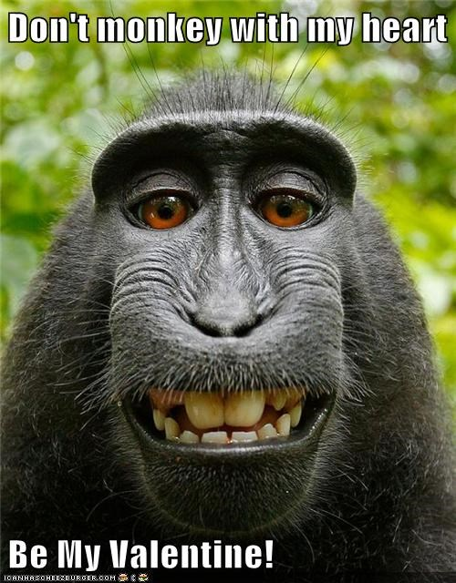 best of the week,Hall of Fame,heart,love,monkey,smile,teeth,Valentines day