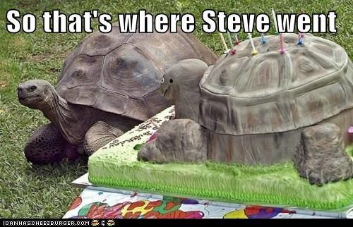 So that's where Steve went
