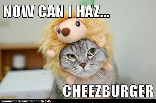 Cheezburger Image 5831010304