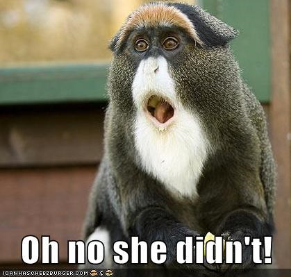 monkeys mouth open oh-no-she-didnt omg what is it wtf - 5831888640