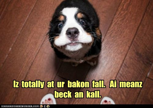Iz totally at ur bakon fall. Ai meanz beck an kall.