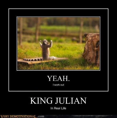 IRL,king julian,lemur,Pure Awesome,ring tailed,wtf