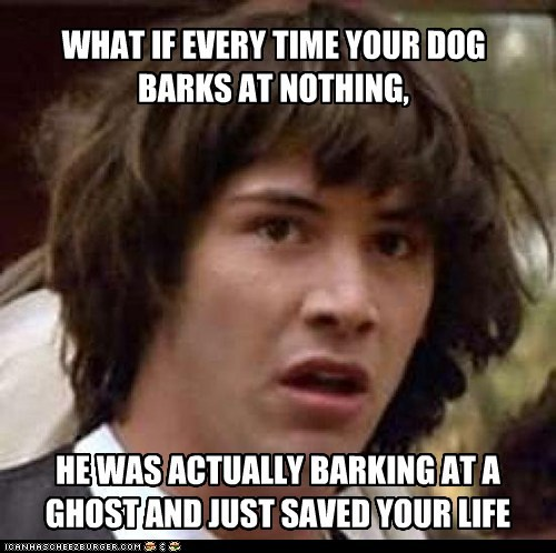 barking conspiracy keanu dogs ghosts todd sawicki kicks dogs true facts - 5832625152