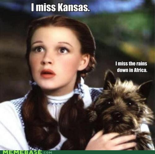 africa Kansas Memes Music oz rains toto - 5832714752