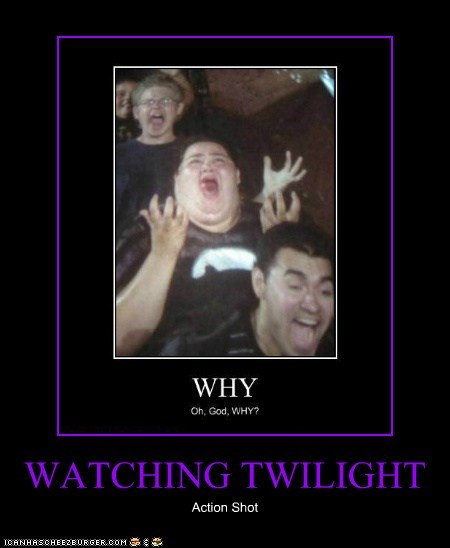 WATCHING TWILIGHT Action Shot