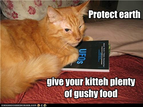 Protect earth give your kitteh plenty of gushy food