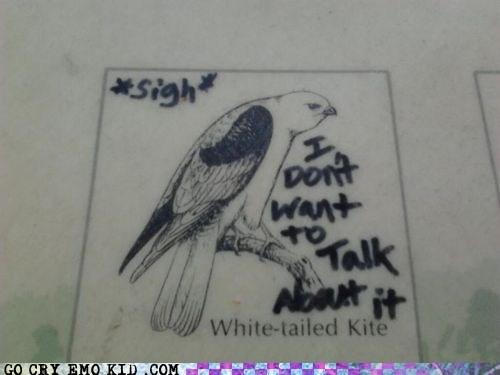 bad day bird drawing emolulz kite