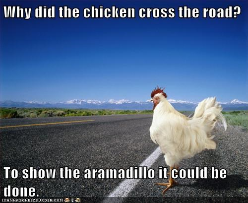 chicken cross the road road why did the chicken cross the road - 5833454592