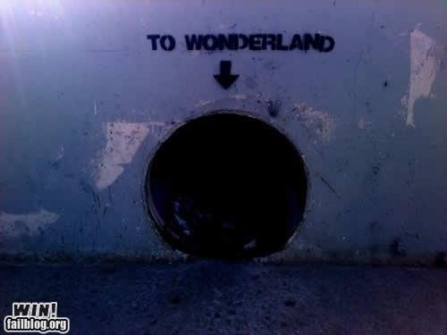 alice in wonderland graffiti hacked irl seems legit - 5834952192